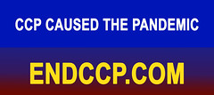 6' CCP Caused the Pandemic