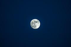 Full Moon California High Res Fine Art Astro Night Photography! Sony A7RIV &   Sony FE 200-600mm f/5.6-6.3 G OSS Lens Gmaster! Elliot McGucken Fine Art Nature Photography A7R4