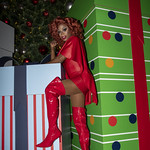 Honey in Santa Monica and Grove Xmas-343