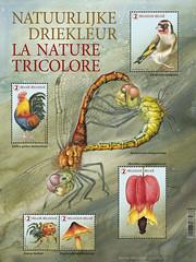 15 Nature tricolore blaadje