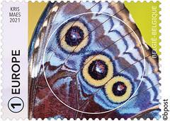 01 Geometrie-cirkel timbre A©