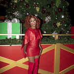 Honey in Santa Monica and Grove Xmas-390