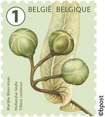 12bis zegels boomvruchten 100% cor.indd