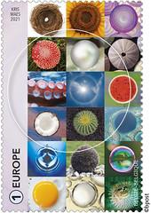 01 Geometrie-cirkel timbre B©