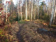 Knuste sykler, Trollskogen, Askim, Indre Østfold, Viken, Norway