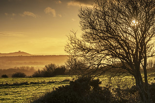 Cleadon Hills, South Tyneside
