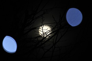 Funky Gibbous Betwixt Fairy Lights