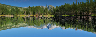 UPSIDE DOWN REFLECTION
