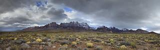 Winter Arrives in the Desert