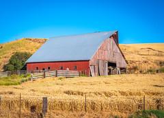 Palouse Barn & Fields: The Palouse GFX100 Fine Art Landscape Nature Photography Washington State! Elliot McGucken Master Medium Format Landscape Photography Fuji GFX 100 & FUJIFILM FUJINON GF LM WR Lens !