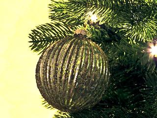 Christmas Boerboel