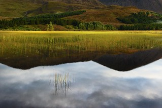 Scotland Fix of the Day: The Hairy Loch on the Isle of Skye was mirror calm that morning, reflecting the mountain where legends say a witch lived. The real name is Loch Cill Chriosd but the reeds give it the hairy look, so that's what the locals call it.