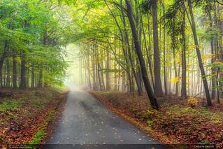 Cesta na Klenčov