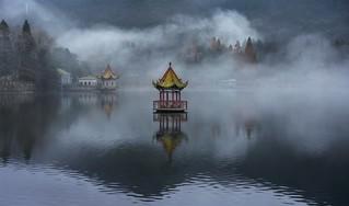 雾锁芦林湖