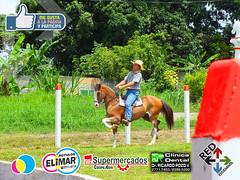 Feria Caballo 2016