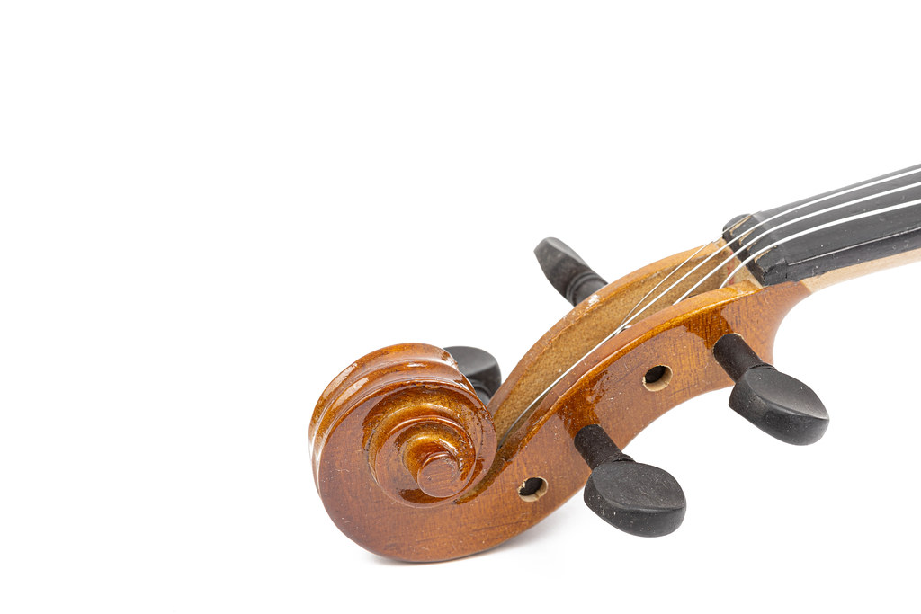 Violin Scroll with Tuning Pegs above white background with copy space