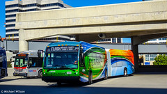 Montgomery County Transit Ride On FLASH BRT 2020 Novabus LFSA #6003D