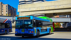Montgomery County Transit Ride On 2009 Gillig Low Floor Advantage Hybrid #5341