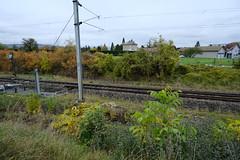 Rails @ Saint-Pierre-en-Faucigny
