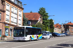 iSibus / Mercedes-Benz Citaro K n°109035