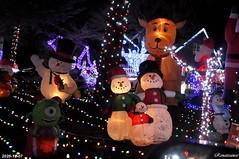 2020 Holiday Lights