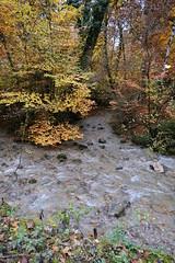 Confluence @ Ruisseau du Creux des Mouilles @ Sanctuaire de la Bénite Fontaine @ Saint-Sixt