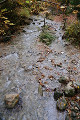 Ruisseau de la Bénite Fontaine @ Saint-Sixt