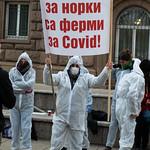 Протест за затваряне на фермата за норки заради CoVID-19 (2020)
