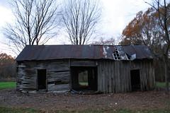 Dog Trot Cabin