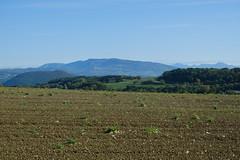 Salève @ Plateau de la Verniaz @ Desingy