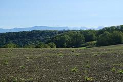 Plateau de la Verniaz @ Desingy