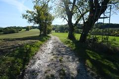Plateau de la Verniaz @ Clermont