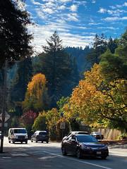 Nice Autumn Day