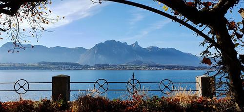 Suisse - Berne - Lac de Thoune - Oberhofen