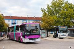 Citéline / SNCF / Mercedes-Benz Intouro M n°2620 et Iveco Crossway Pop 13 n°23956 - Transdev Grand Est