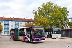 Citéline / SNCF / MAN Lion's City n°3510 et Iveco Crossway Pop 13 n°23956 - Transdev Grand Est