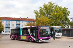 Citéline / SNCF / MAN Lion's City n°3509 et Iveco Crossway Pop 13 n°23956 - Transdev Grand Est