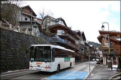 Van Hool T 915 – SAT Thonon (SA des Autos Transports du Chablais et du Faucigny) / Morzine Avoriaz – Portes du Soleil n°459