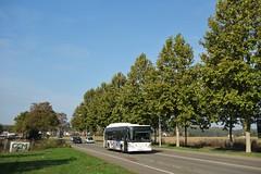 Irisbus Citelis 12 n°402  -  Strasbourg, CTS