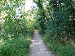 Chemin du Couvert-de-Certoux @ Perly-Certoux