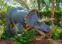 Dinosaur World 2020