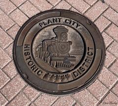 Plant City, Florida 2020