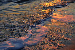 The last light froth