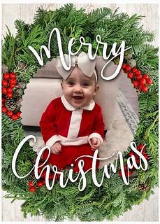 Christmas Season photos