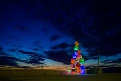 Blue Hour Christmas