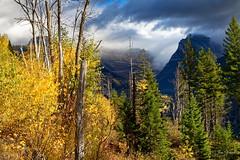 Banff and Glacier National Parks 2015