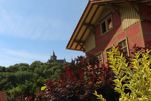 2020-08-05 001 Harz - Wernigerode