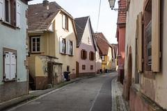 Rue Sainte-Odile, Bernardswiller, Alsace, France