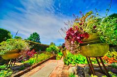 Cloud Hill Garden