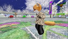 New Year 2020-2021 in Raglan Shire